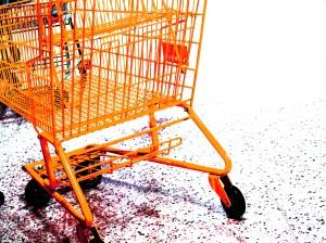 ADA shopping cart