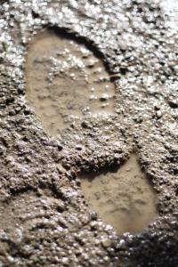 muddy foot print