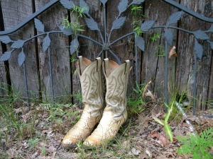 cowboy-boots-177193_1280